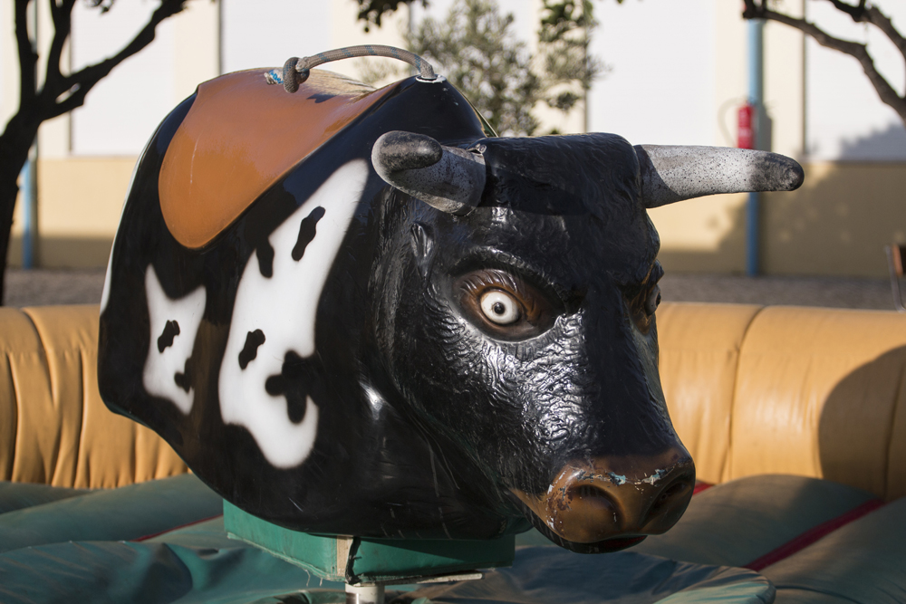 Bull-Ride - Theme park holidays