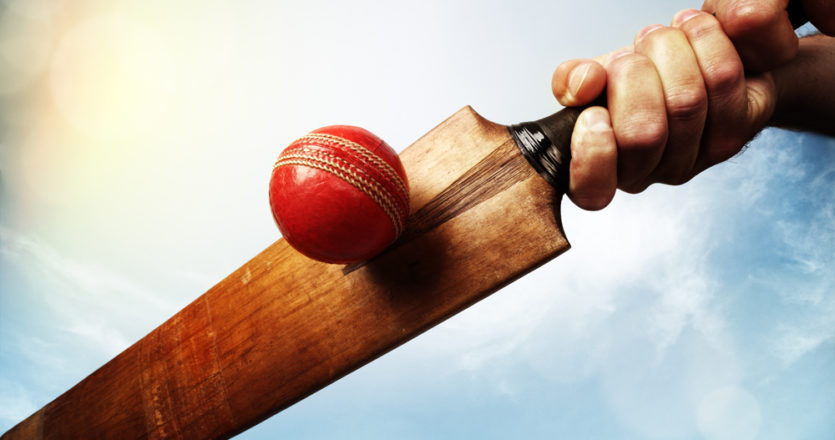 Cricket - Best theme parks in Kerala